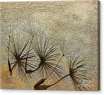 Three Wishes Canvas Print by Artist and Photographer Laura Wrede