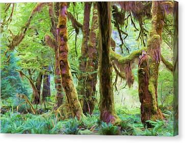 Through Moss Covered Trees Canvas Print by Heidi Smith