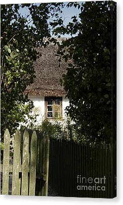 Through The Bushes To The Window Canvas Print