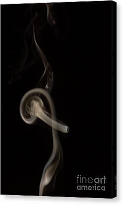 Through The Hoop Canvas Print by Lynda Dawson-Youngclaus