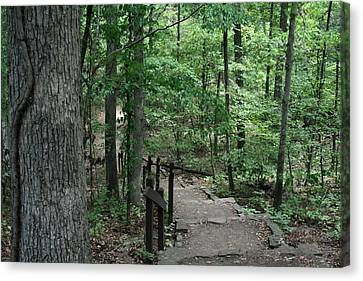 Through The Woods Canvas Print by CGHepburn Scenic Photos