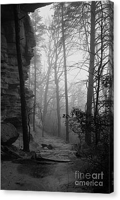 Through These Woods A Path Was Made Canvas Print by Laurinda Bowling