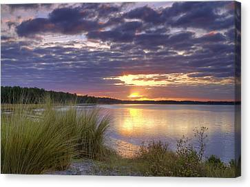 Tidal Estuary Canvas Print by Phill Doherty