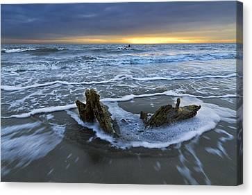 Tides At Driftwood Beach Canvas Print by Debra and Dave Vanderlaan