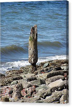 Tides Toll Canvas Print by KD Johnson