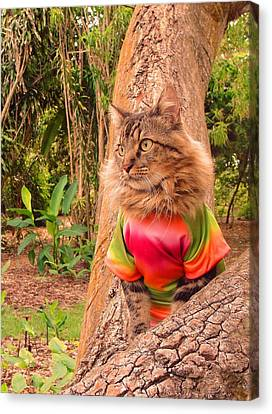 Canvas Print featuring the photograph Tie-dye by Joann Biondi