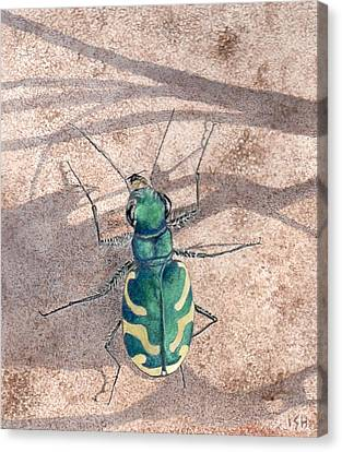 Tiger Beetle Canvas Print by Inger Hutton