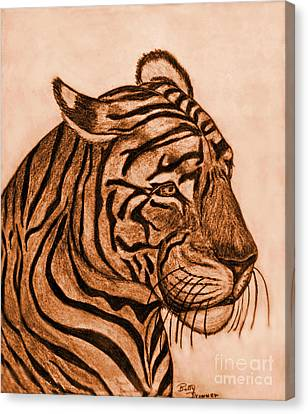 Tiger IIi Canvas Print by Debbie Portwood