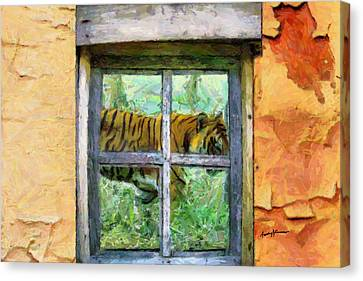 Tiger Outside My Window Canvas Print by Anthony Caruso
