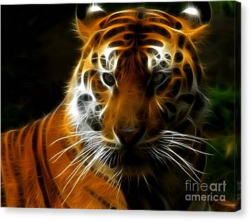 Tiger Portrait Canvas Print by Katja Zuske