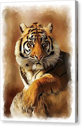 Tiger Portrait  Canvas Print by Michael Greenaway