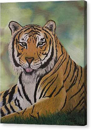 Tiger Canvas Print by Shadrach Ensor