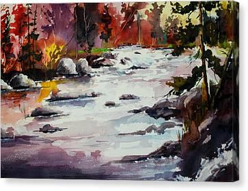 Timber Chute Falls Canvas Print