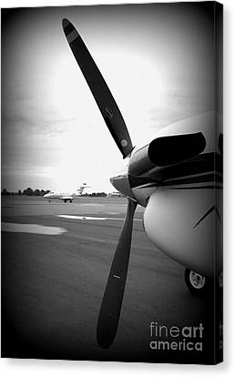 Time To Fly Canvas Print