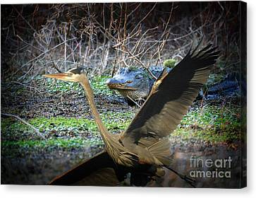 Canvas Print featuring the photograph Time To Leave by Dan Friend