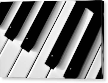 Tinkling The Ivories Canvas Print by Bill Cannon