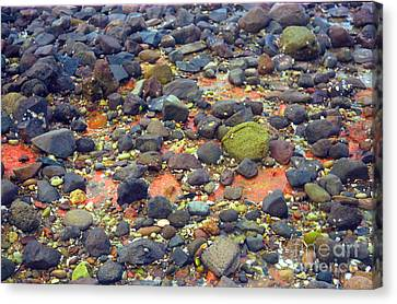 Canvas Print featuring the photograph Tinopoi Beach Rocks by Mark Dodd