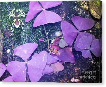 Tiny Frog Canvas Print by Tammy Herrin