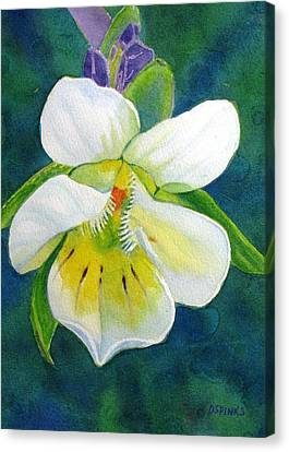 Tiny Wildflower Canvas Print by Debra Spinks