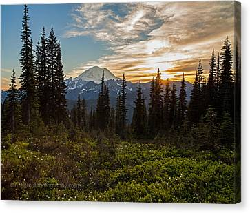 Tipsoo Golden Sunset Canvas Print