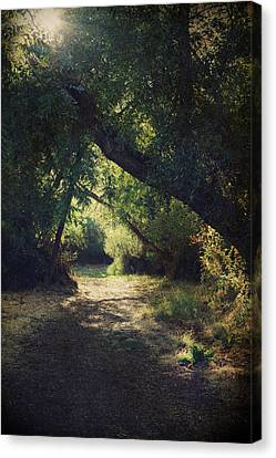 To My Happy Place Canvas Print by Laurie Search
