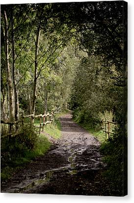 To The End Of September Canvas Print by Odd Jeppesen