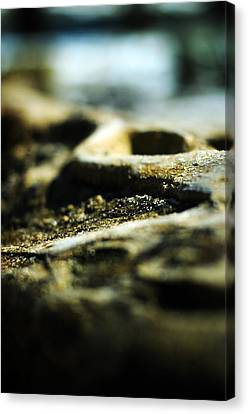 To The Sea Canvas Print by Rebecca Sherman