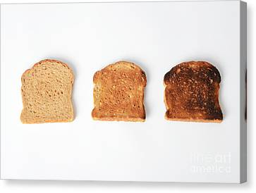 Toasting Bread Canvas Print by Photo Researchers, Inc.