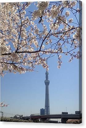 Tokyo Sky Tree Canvas Print