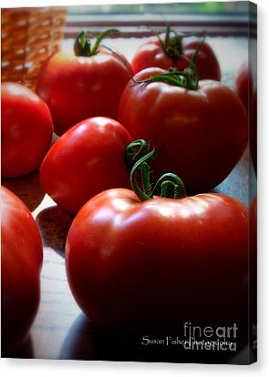Canvas Print featuring the painting Tomato Love by Susan Fisher