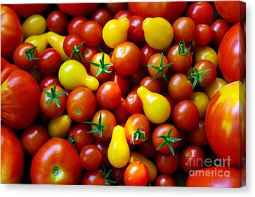 Tomatoes Background Canvas Print by Carlos Caetano