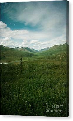 Tombstone Mountain Canvas Print by Priska Wettstein