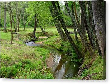 Canvas Print featuring the photograph Toms Creek In Early Spring by Kathryn Meyer