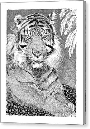 Tony The Tiger Canvas Print by Jack Pumphrey