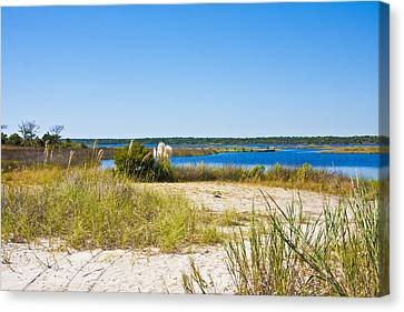 Topsail Sound Canvas Print by Betsy Knapp