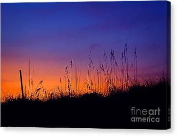 Topsail Sunset Canvas Print
