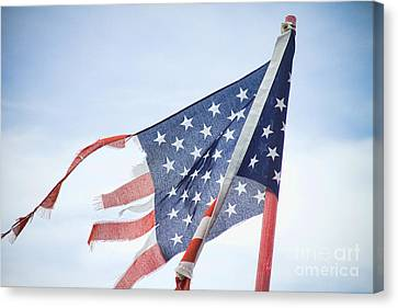 Torn American Flag Canvas Print by James BO  Insogna
