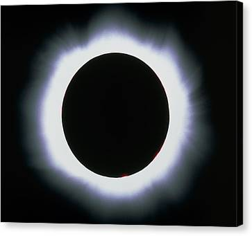 Total Solar Eclipse, 1999 Canvas Print by Dr Fred Espenak