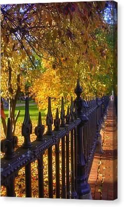 Touched By Autumn Canvas Print