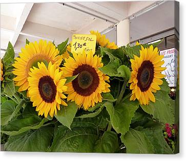 Canvas Print featuring the photograph Tournesol by Carla Parris
