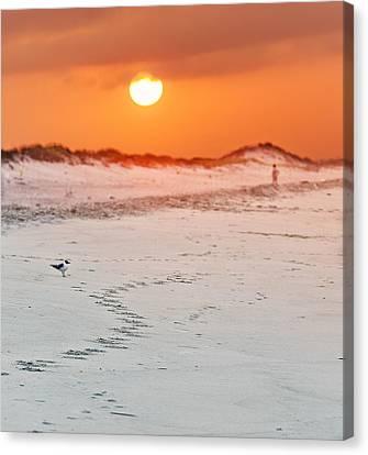 Toward The Sunrise Canvas Print by Vicki Jauron