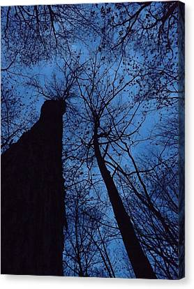 Towering Into The Night Canvas Print by Gerald Strine