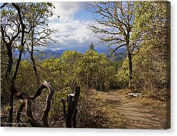Trail At Cathedral Hills Canvas Print