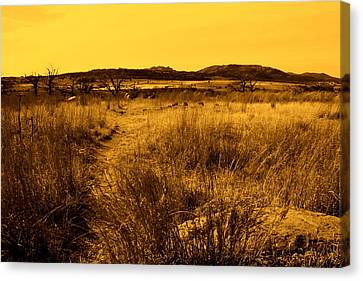 Trail To The Valley II Canvas Print