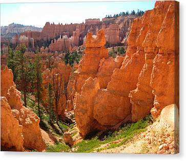 Trail View Bryce Canyon Canvas Print