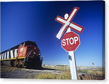 Train Passing Railway Crossing Canvas Print by Dave Reede