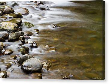 Tranquil Canvas Print by Heidi Smith