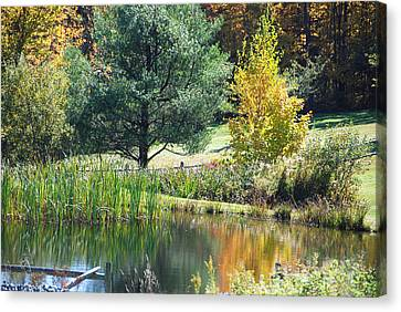 Canvas Print featuring the photograph Tranquil by John Schneider