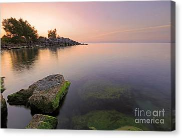 Tranquil Morning Canvas Print by Charline Xia