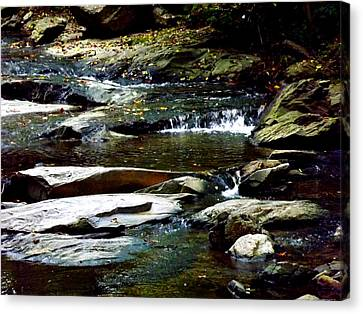 Canvas Print featuring the photograph Tranquil River In Asheville Nc by Jodi Terracina